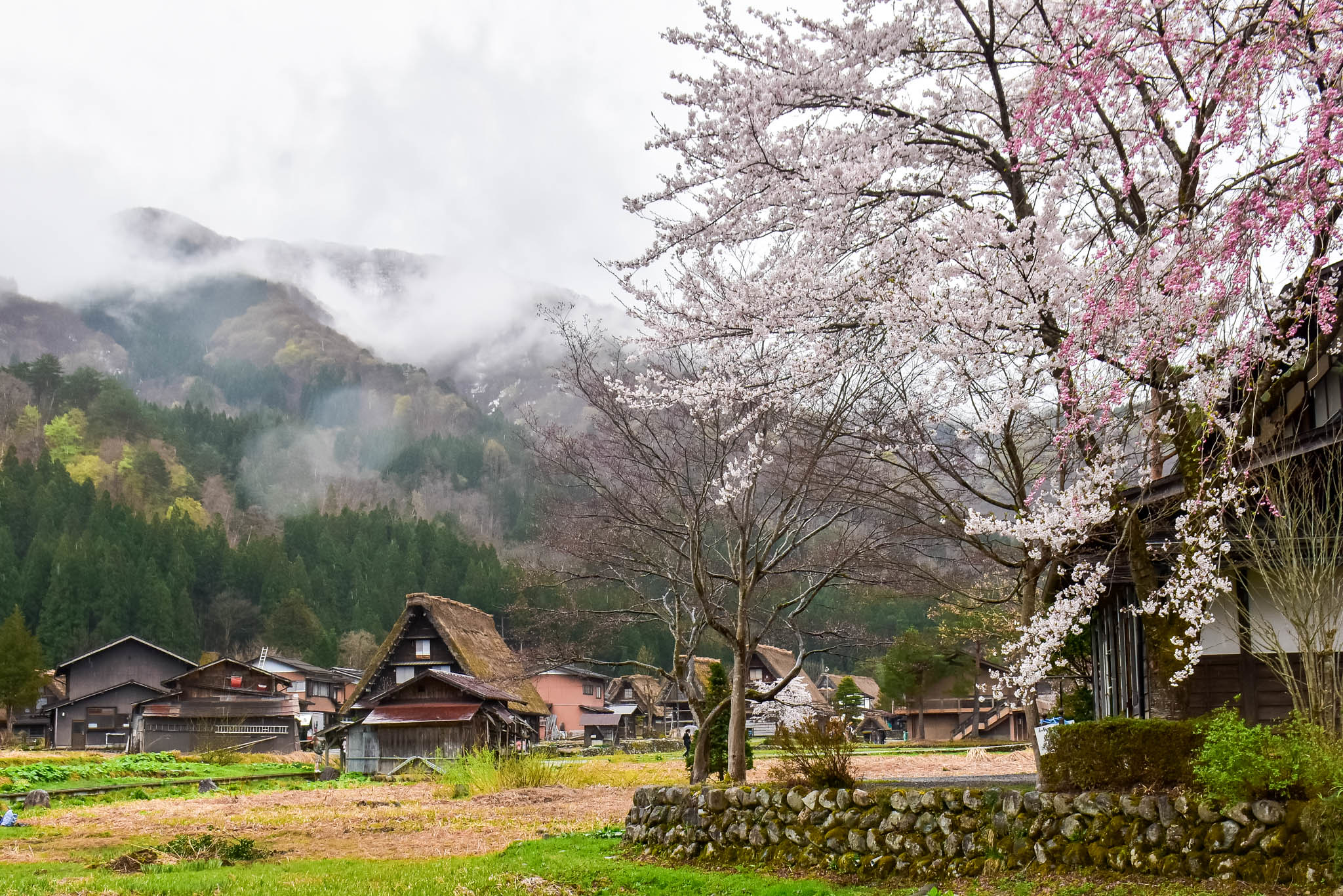 shirikawago 1 (22 of 1)