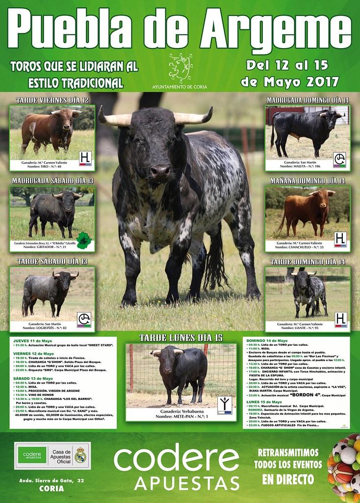Cartel de Toro de las Fiestas de Puebla de Argeme 2017