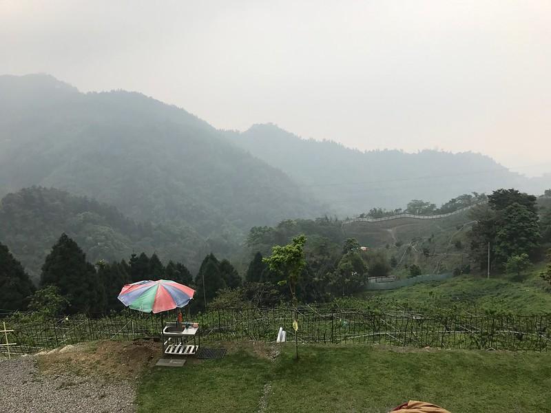 下午起霧了