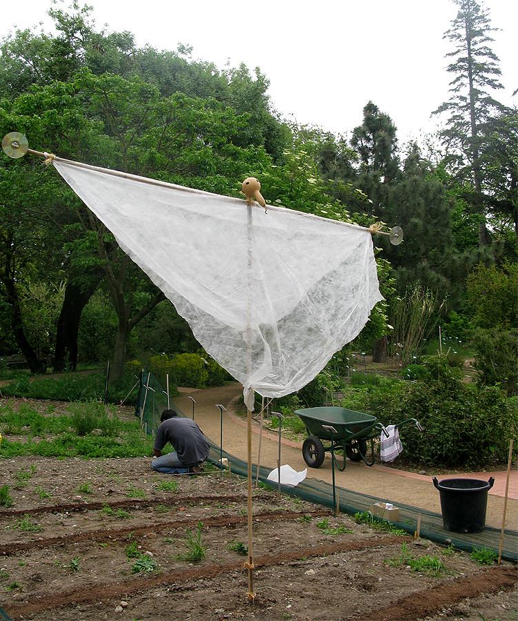 epouvantail du jardin botanique jardin botanique henri gau flickr. Black Bedroom Furniture Sets. Home Design Ideas