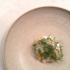 Dessert #1 = ricotta, tangerines, hazelnut sorbet, fennel. @pleasecinci #onthetable
