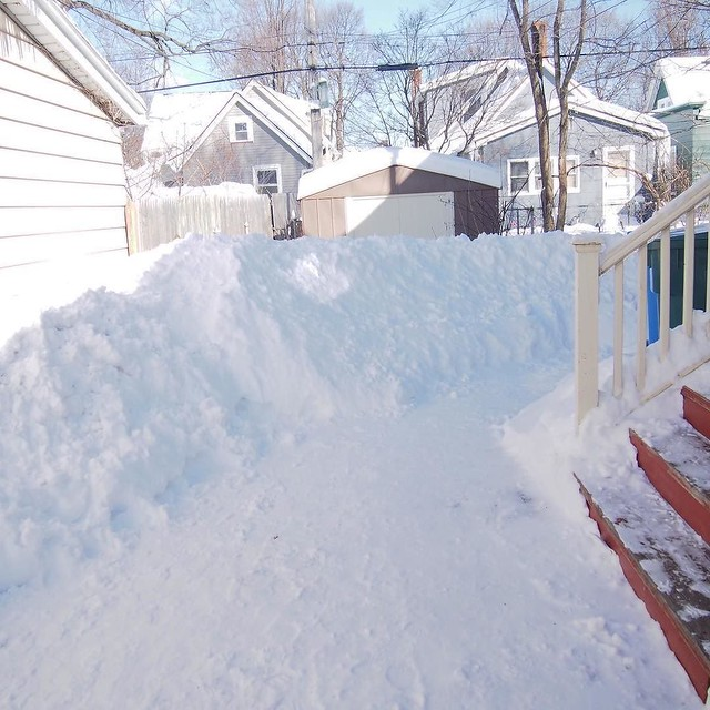 We have a 4.75 foot wall of snow around our house now. Good thing there's no more snow in the forecast because we are seriously out of room!