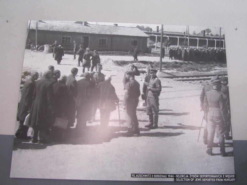 Los ancianos eran ejecutados nada más llegar a Austchwitz