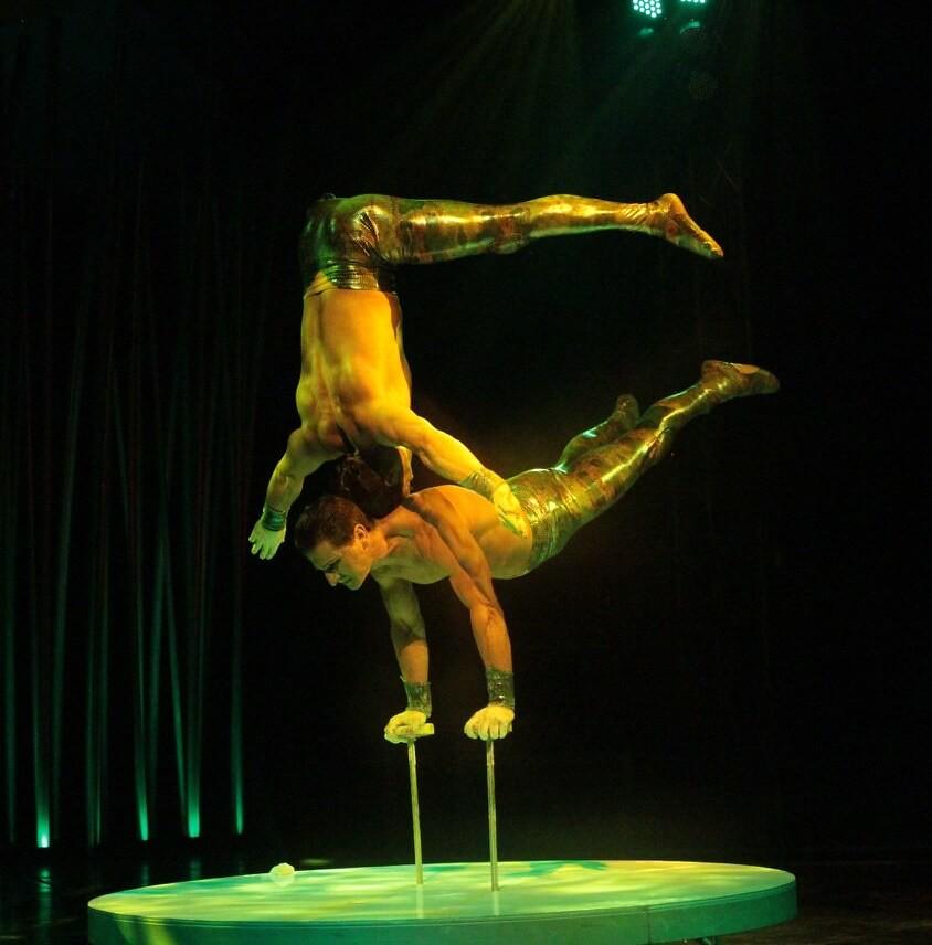 Circo Italiano Vida
