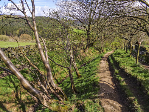 Walking down Mill Lane