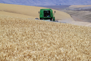 Harvest time | by OregonDOT