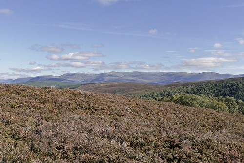 Western Cairngorms | by Nick Bramhall