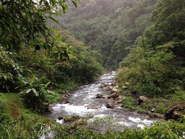 九寮溪是崙埤部落土地,目前則劃編為林務局國有林班地。攝影:廖靜蕙