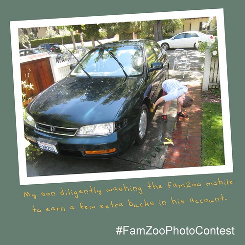 FamZoo Good Money Habits Photo Contest | by FamZoo