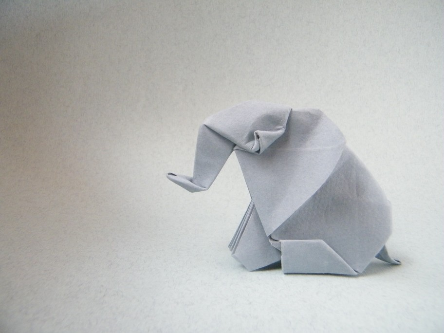 Rui Elephant Sitting Barth Dunkan From A Square Of Canso Flickr