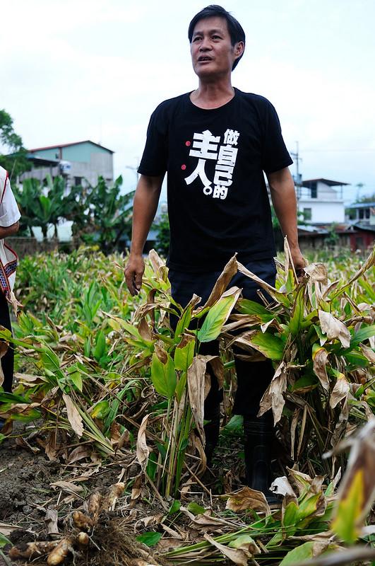 織羅部落農友黃偉峰是振興部落葛鬱金發展的靈魂人物
