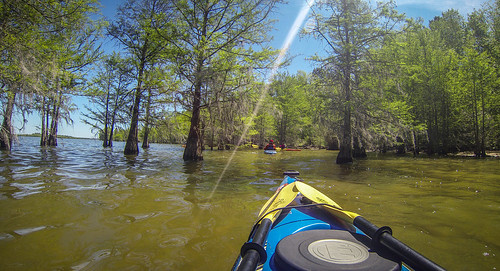 Paddle to Church Island with the Tri-County Blueways Paddlers-073