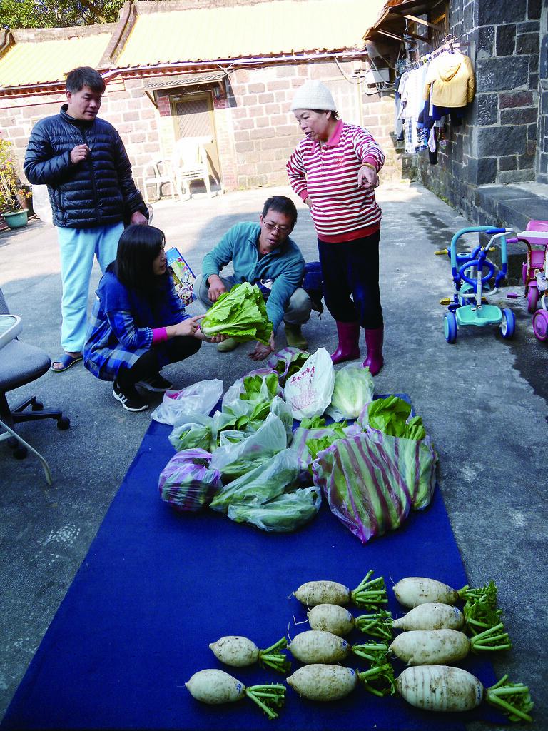 菜量盛多只好善用地面空間,成員、農民們正在為新的蔬菜命名。雨天時非常克難,沒地方躲,甚至搬至客廳繼續理菜。圖片來源:康椒媛攝影,主婦聯盟提供。