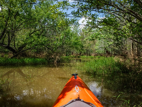 Dyar Pasture and Lake Oconee-30