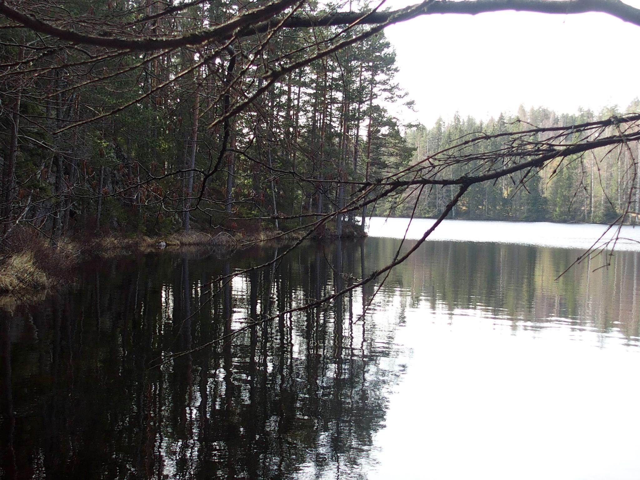 Utsikjt över sjön