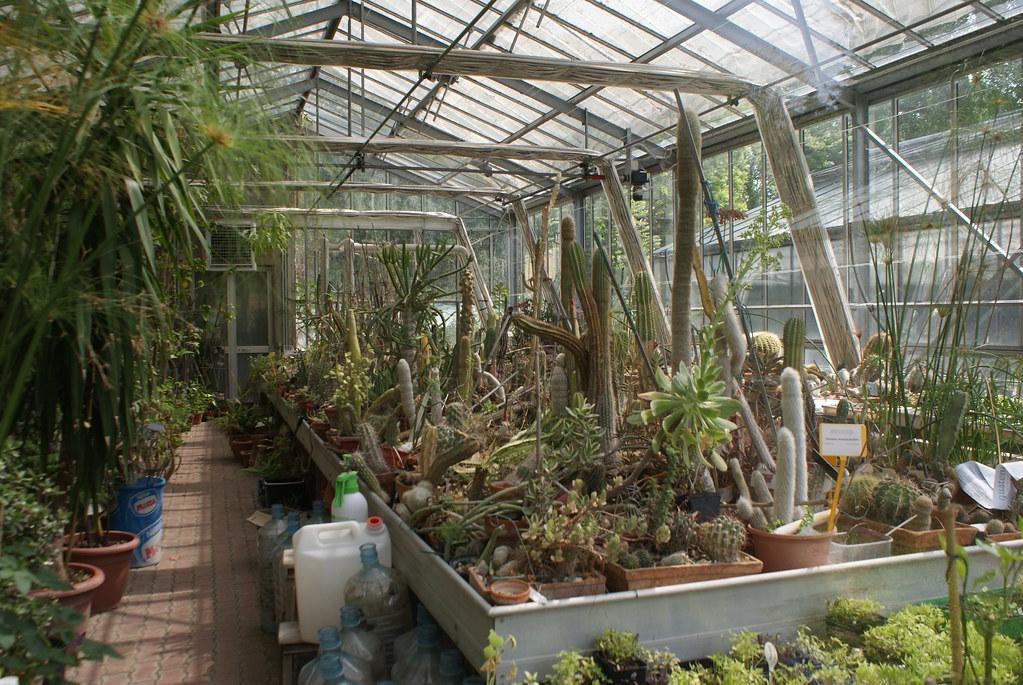 Serre du jardin botanique, certaines sont sensées être ouverte au public : Malheureusement pas au moment de ma visite.