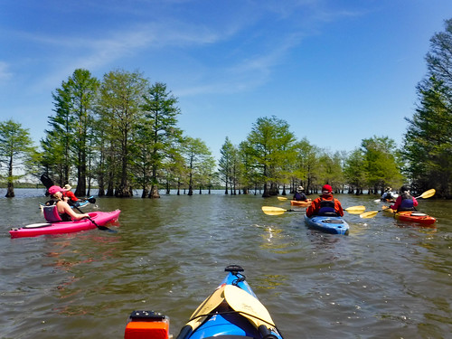 Paddle to Church Island with the Tri-County Blueways Paddlers-019