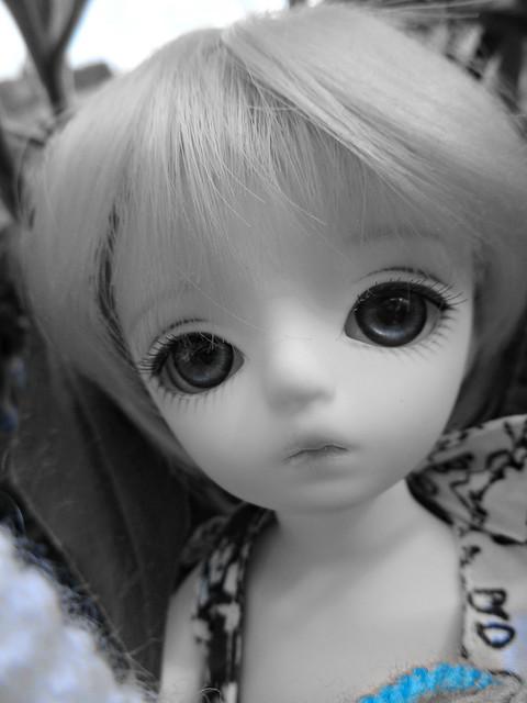 Lullaby, ma petite Neko Haroo 33570498423_4cfc9b7a48_z