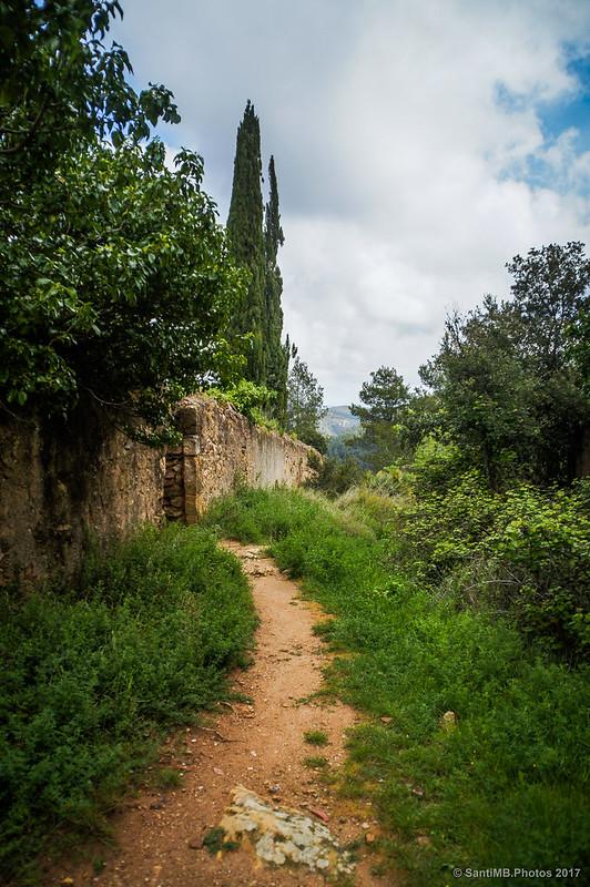 Camino del cementerio de Marmellar