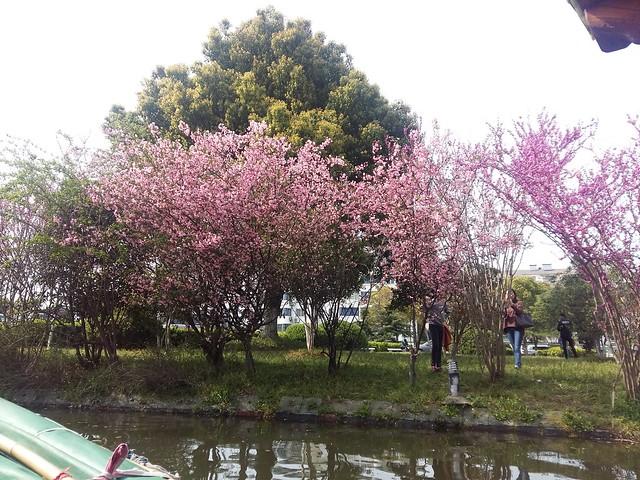 Spring, Suzhou