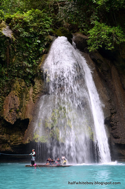 halfwhiteboy - kawasan falls, badian, cebu 09
