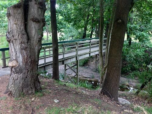 Bridge across Back Creek in South Surrey Park