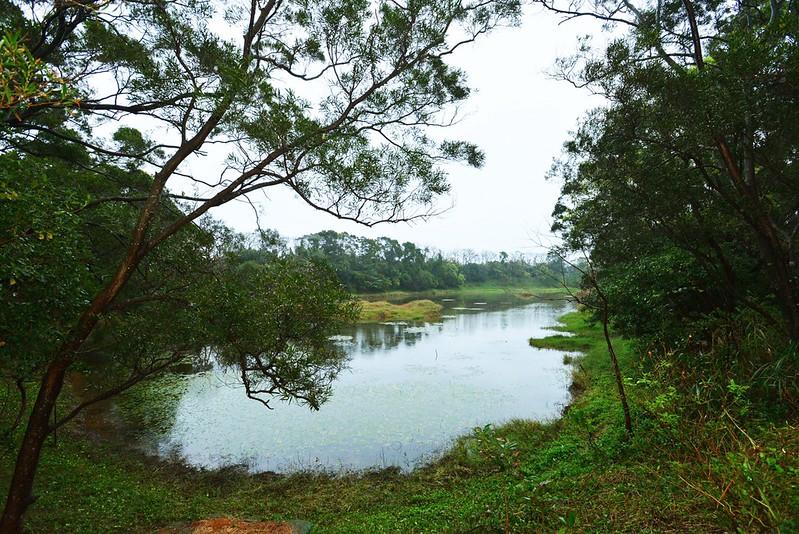 鄭文燦視察楊梅高榮野生動物保護區。照片提供:桃園市政府。