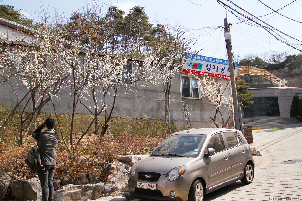 33241165690 b2f7840ae7 b - Seoul-ful Spring 2016: A mini exploration of Ihwa Mural Village
