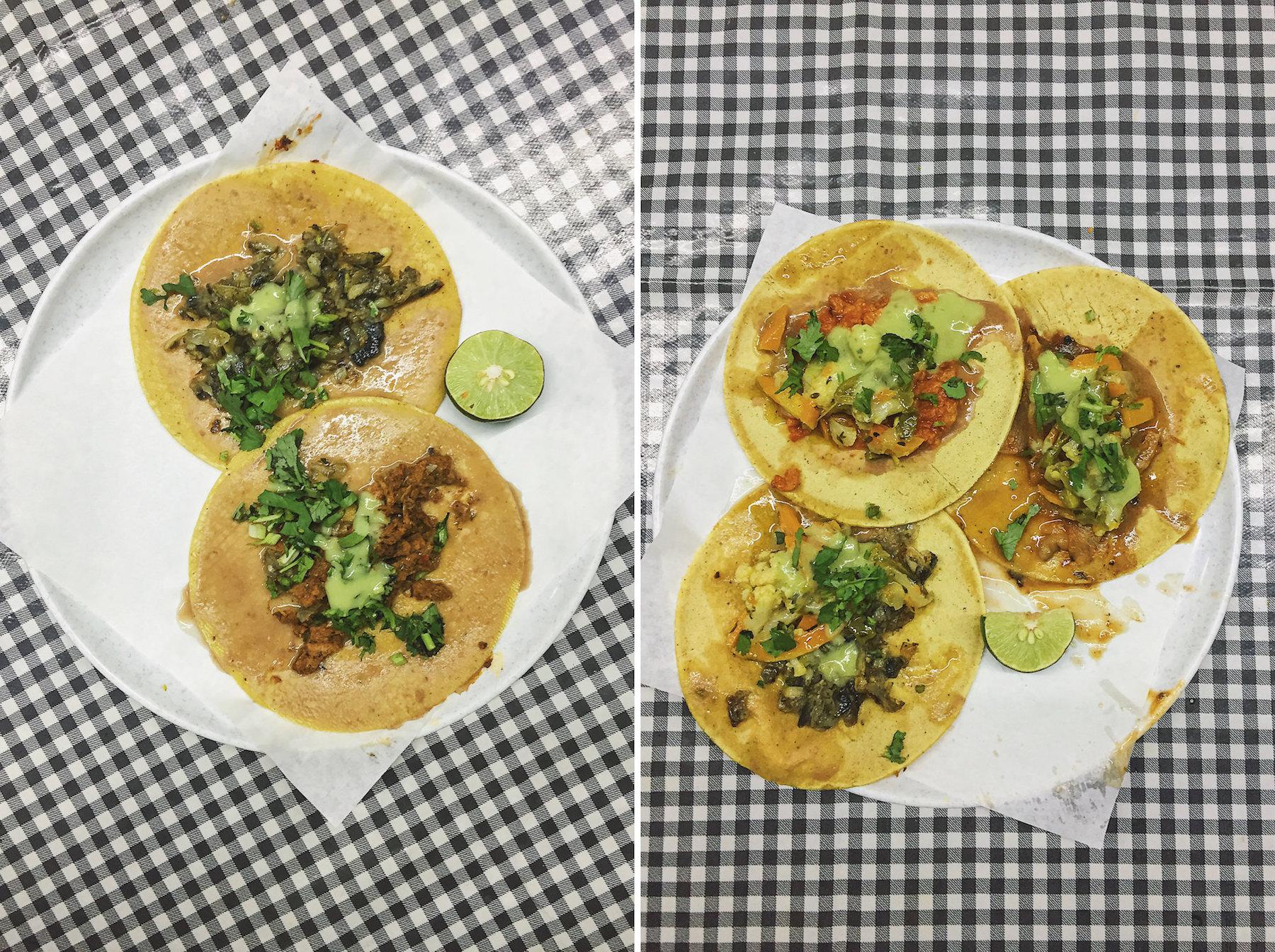 Guadalajara: Gani TacoFu Food Truck