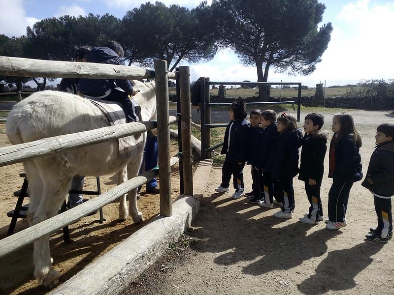Infantil. Visita a la granja 2017