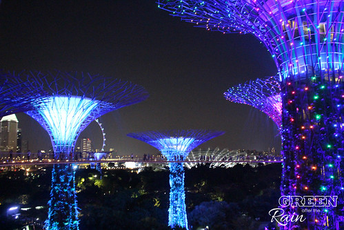 160910f OCBC Skywalk Gardens by the Bay _113