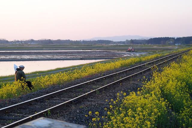 Tori-Tetsu (A train photographer)
