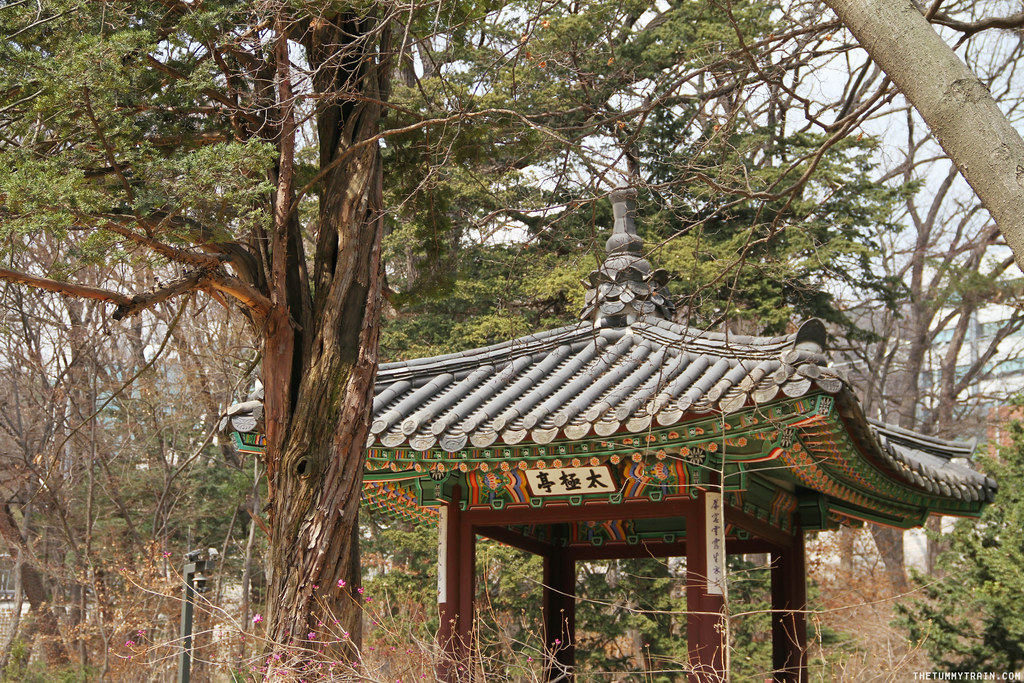 32715972183 17ea7f5b0f b - Seoul-ful Spring 2016: Greeting the first blooms at Changdeokgung Palace