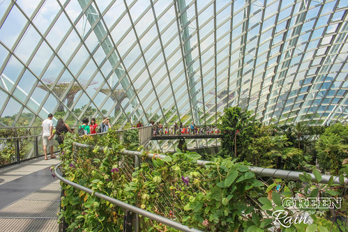160909d Cloud Dome Gardens by the Bay _164