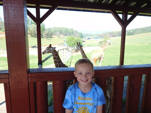 April 28 2017 Safari Park Field Trip 2nd Grade (9)