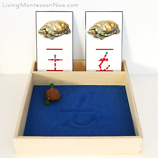 Turtle Sand Writing Tray