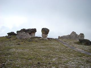 31 Tundra trail