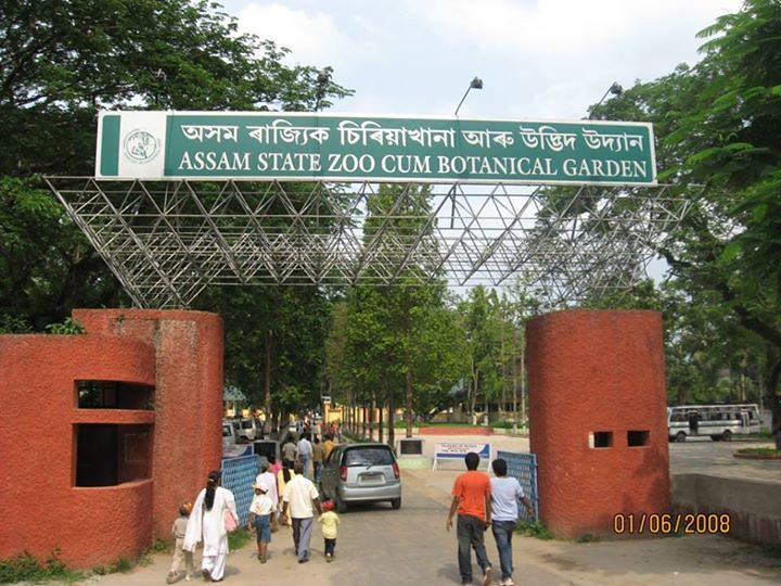 Wow Around 26 000 Visitors Thronged The Assam State Zoo
