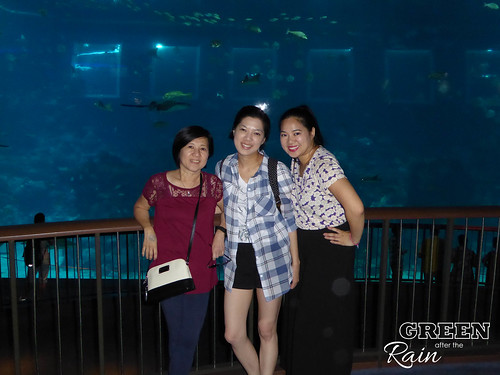 160908d Maritime Museum and SEA Aquarium _226