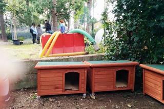 Noicattaro. Animali al parco front
