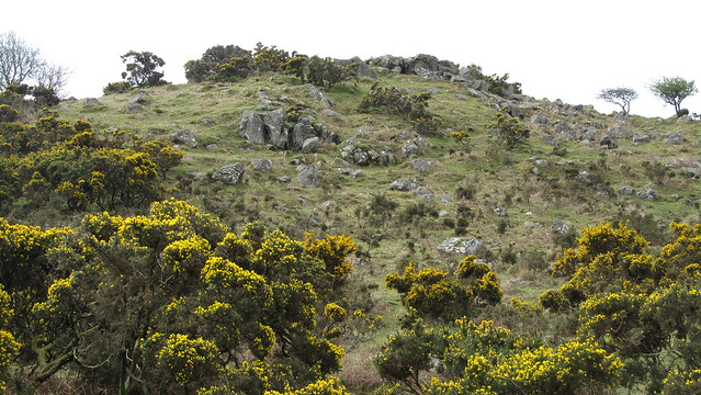 Crownhill Tor