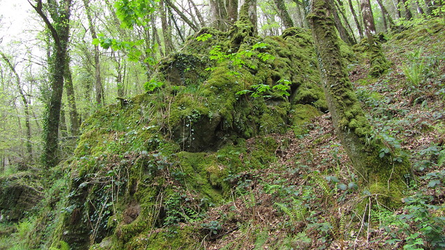 Another unnamed outcrop beside the River Dart