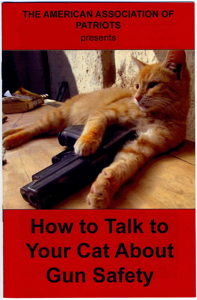 How To Talk To Your Cat About Gun Safety Green Apple Books