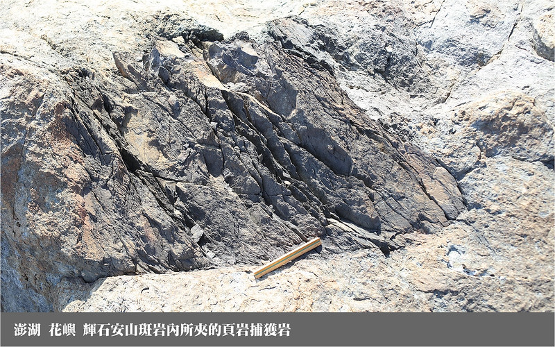 花嶼 輝石安山斑岩內所夾的頁岩捕獲岩