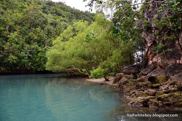 halfwhiteboy - bojo river cruise aloguinsan 11