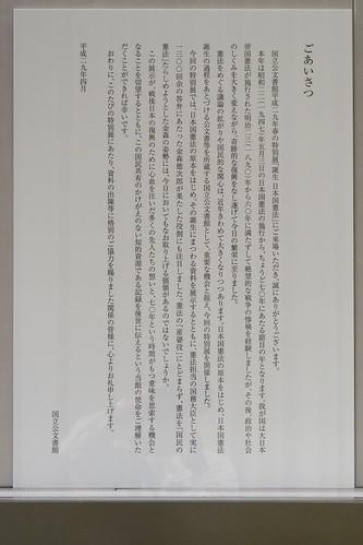 P1011291.jpg