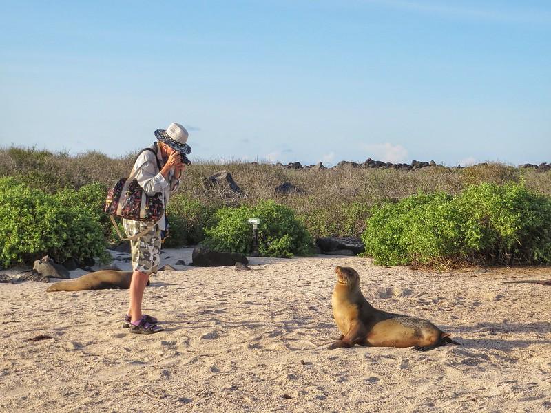 A tourist photographs a sealion