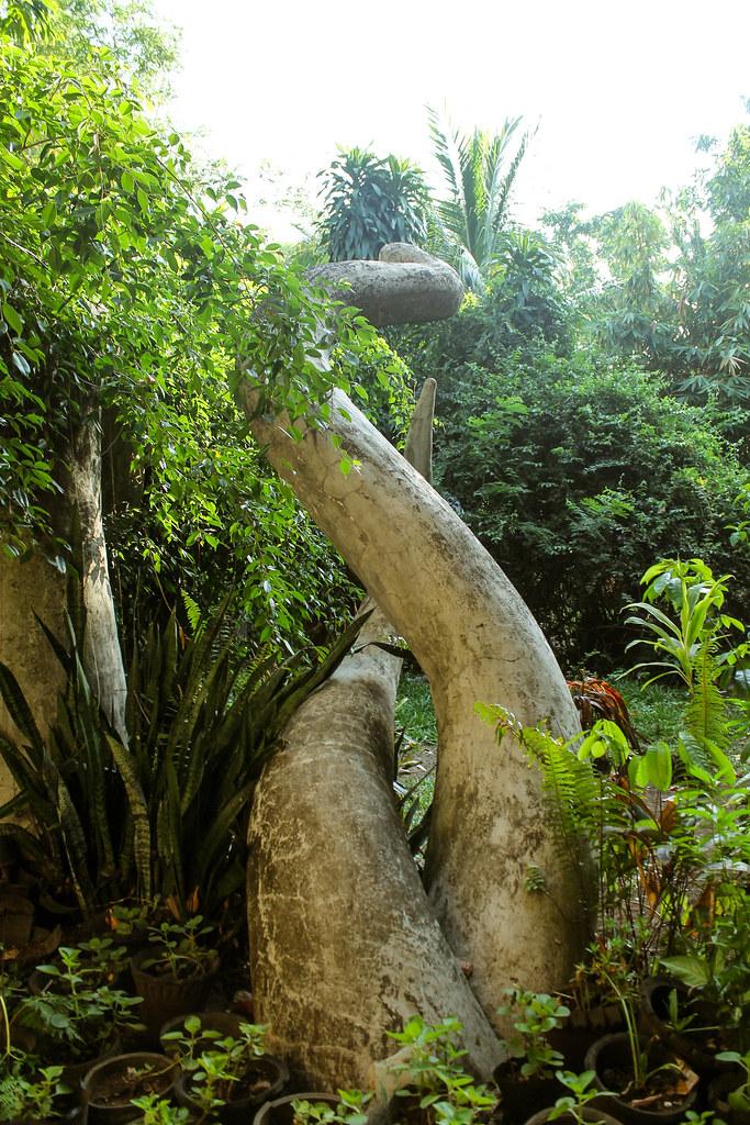 Enigmata Treehouse - Camiguin Island 2015 (27)