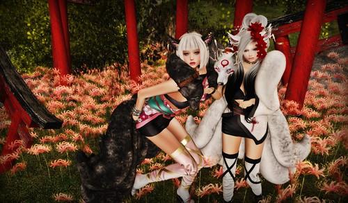 九尾の女狐's!