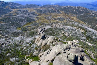 From the top of Mount Buffalo | by Christine Collister snapshot queen!